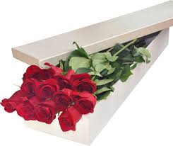Roses In A Box Filipinas Gifts 12 Red Roses In Box