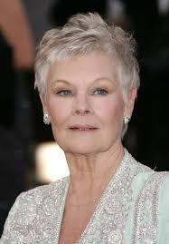 the queen and dame judi admirable role models u0026dash blog