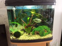 tropical fish tank stand and accessories romford essex