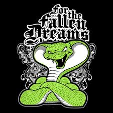 for the fallen dreams jersey satellite graphics