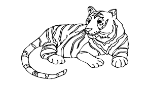 coloring pages how to draw a tiger how to draw a tiger