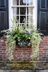 Beautiful Window Boxes G And M Charleston Window Boxes