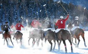 snow polo st moritz hotels u0026 restaurants