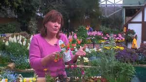 how to design a flower garden food u0026 home modernmom youtube