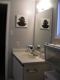 bathroom finding suitable bathroom mirror home depot beautiful