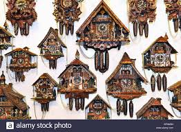 clock cuckoo clock black forest cuckoo clocks hanging on the