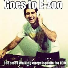 Edm Memes - electric zoo 2013 top 15 scheduled djs
