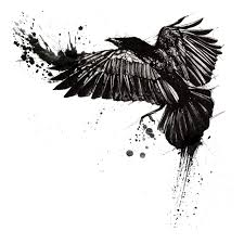 black ink flying crow tattoo design photos pictures and