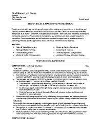 senior sales and marketing professional resume template premium