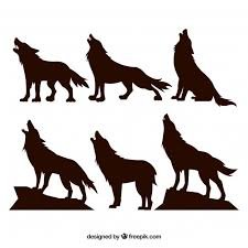 wolf vectors photos and psd files free