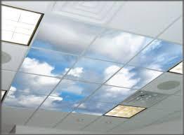 Enchanting Drop Ceiling Light Panels Ceiling Tiles Drop Ceiling
