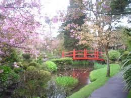 imagenes de jardines japones los jardines japoneses tully en kildare