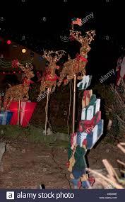 lighted reindeer lighted reindeer outdoor christmas decorations stock photo