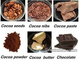 easy vegetarian chocolate recipes