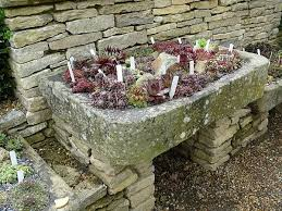 brilliant rock garden planters 17 best images about trough gardens
