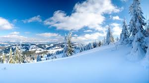 wallpaper winter snow spruce morning slope sky hill trees