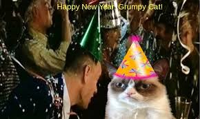 Happy New Year Cat Meme - happy new year cat meme cat planet cat planet