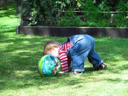 free images grass outdoor lawn play boy cute summer young