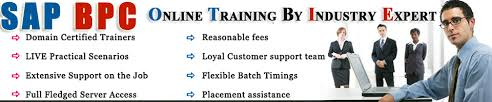 Sap Bpc Resume Samples by Sap Bpc Resume With Three Years Sap Bpc Training Guide