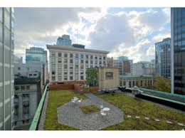 greenroofs com projects granville street rooftop patio