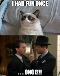 Grumpy Cat Meme I Had Fun Once - grumpy cat bed meme imgflip