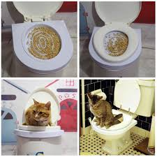 creative pet products cat plastic bedpans easy to learn cat toilet