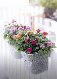 Flowers For Home Decor 55 Balcony Greenery Ideas U2013 Choose Flowers For Balcony And Arrange