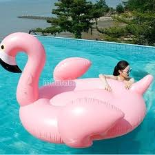 amazon pool floats swan pool firegrid org