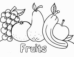 smart idea fruit coloring pages baskets color preschool