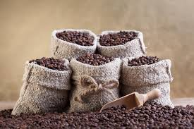 small burlap bags roasted coffee beans in small burlap bags stock photography