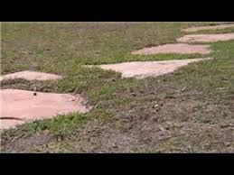 Laying Patio Slabs On Grass Home Landscaping Tips How To Place Stepping Stones Youtube