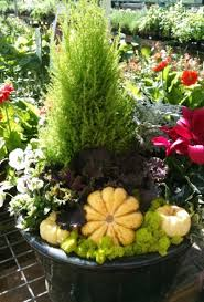 creative fall and container ideas gardens