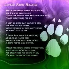 best 25 letter from heaven ideas on pinterest love letter for