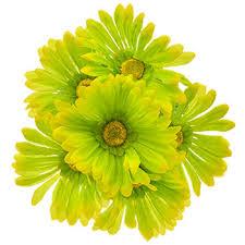 bulk flowers at dollartree com