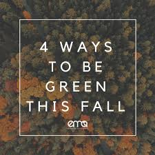 lexus financial go green ema healthy family tips 4 ways to be green this fall