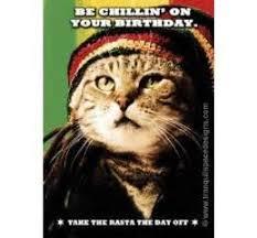 funny cat birthday card u0027fur paws u0027 nine lives tranquil space