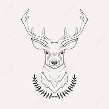Stag Head Designs Best 25 Deer Drawing Ideas On Pinterest Deer Tattoo Deer Art