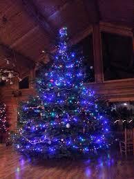 oh christmas tree oh christmas tree you are really big