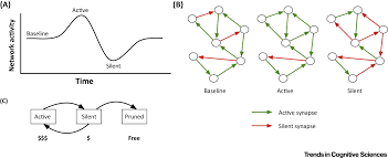 Understanding Home Network Design by Network Design And The Brain Trends In Cognitive Sciences