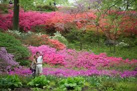 new york botanical garden bronx nycgo com