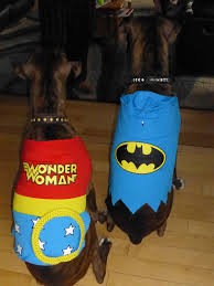 Halloween Costumes Boxer Dogs Theresa U0027s Mixed Nuts Wordless Wednesday Happy Howloween
