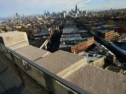 view from the rooftop of the robey hotel in wicker park chicago