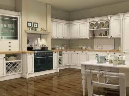 White Kitchen Cabinet Paint 37 Best Kitchen Cabinets Paint Images On Pinterest Kitchen
