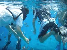 Iowa snorkeling images Snorkel adventure cozumel mexico top tips before you go with jpg