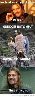 Boromir Memes - boromir s pet bird the meta picture