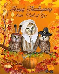 happy thanksgiving from owl of us digital by glenn holbrook