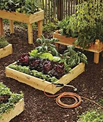 awesome impressive on small backyard vegetable garden ideas raised