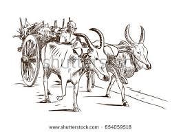 bullock cart stock images royalty free images u0026 vectors
