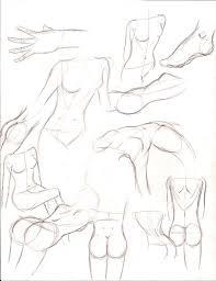 female anatomy study by sugoime on deviantart