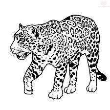 tribal jaguar and jaguar walking designs